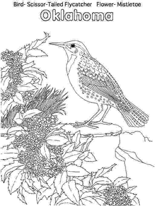 oklahoma state bird oklahoma state bird notebooking set scissor tailed state oklahoma bird