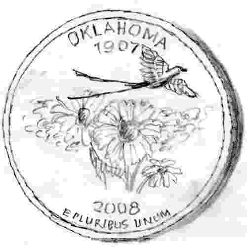 oklahoma state bird oklahoma state outline coloring page free worksheets state oklahoma bird