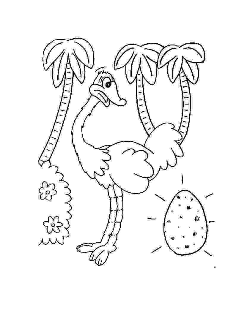 ostrich coloring page free printable ostrich coloring pages for kids coloring ostrich page 1 2