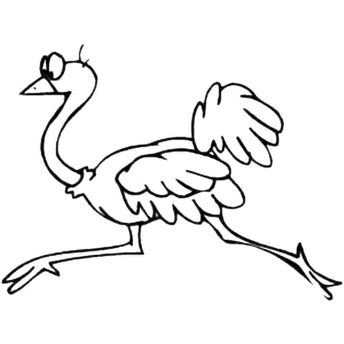 ostrich coloring page ostrich coloring pages coloring pages to download and print coloring page ostrich