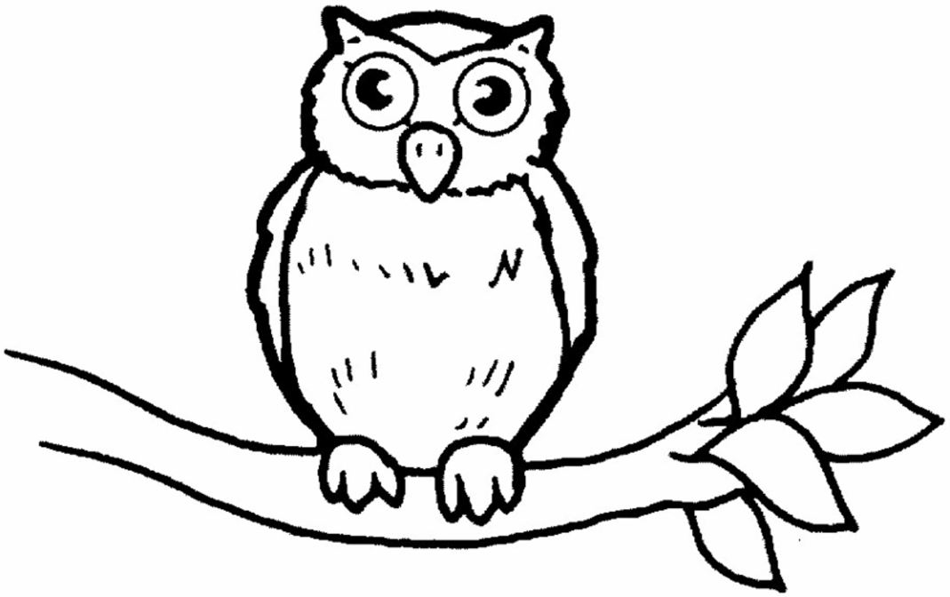 owl coloring pages for kids owls coloring pages getcoloringpagescom kids owl coloring for pages
