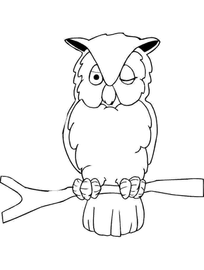 owl coloring picture owl coloring pages all about owl owl coloring picture