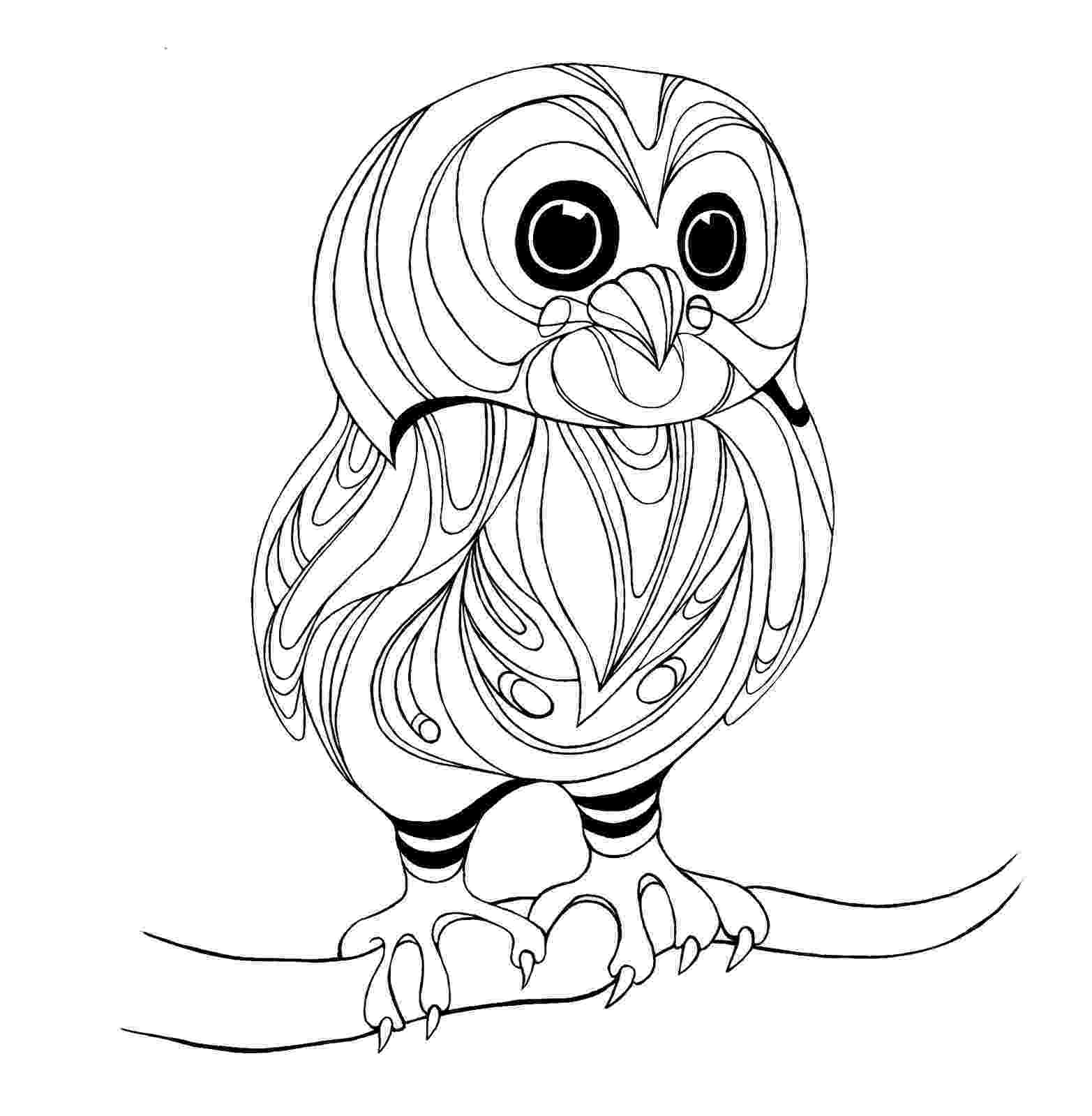 owl coloring picture owl coloring pages kidsuki owl picture coloring