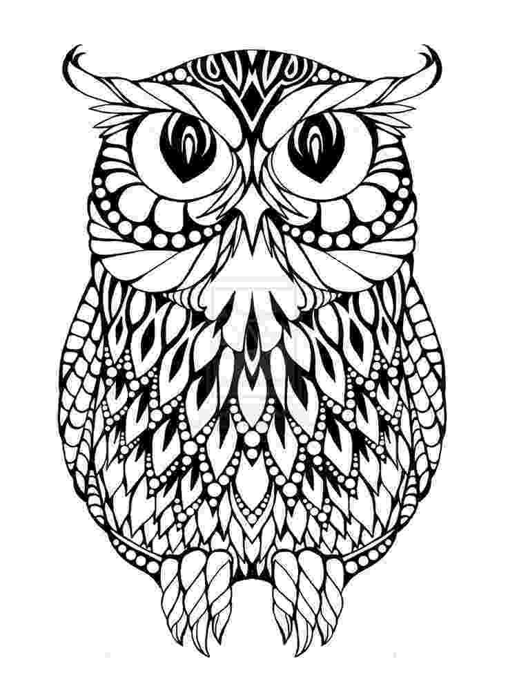 owl coloring sheet baby owls coloring sheet to print owl sheet coloring