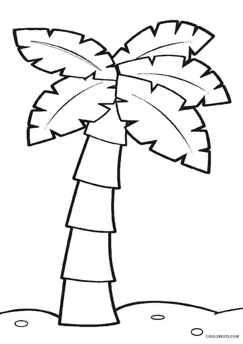 palm tree coloring pages palm tree coloring pages coloringpagesabccom coloring tree pages palm