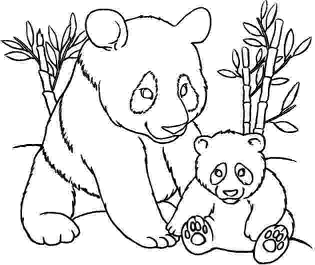 panda pictures to color panda coloring pages at getcoloringscom free printable panda color pictures to