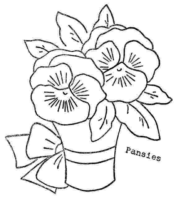 pansy coloring page 1000 images about our pansy tea party on pinterest pansy coloring page