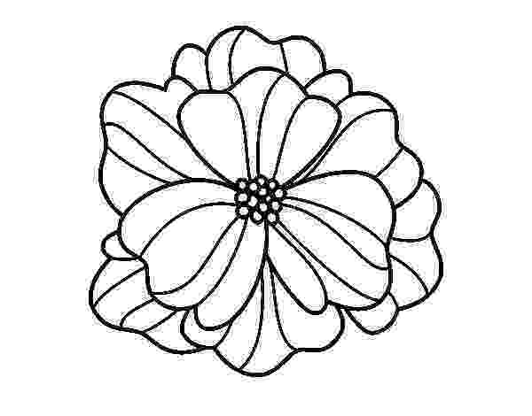 pansy coloring page inkspired musings the language of flowers pansy coloring page pansy