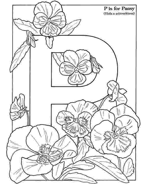 pansy coloring page inkspired musings the language of flowers pansy pansy coloring page
