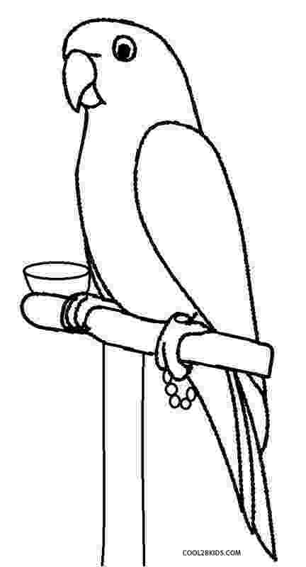 parrot printable coloring page of a macaw parrot pirate parrot coloring printable parrot