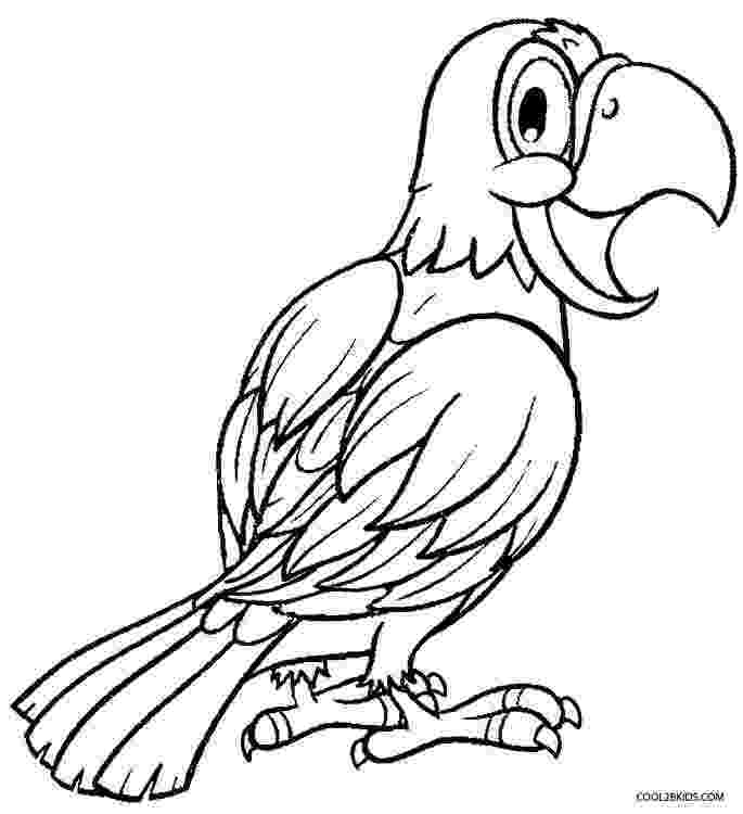 parrot printable free printable parrot coloring pages for kids bird printable parrot
