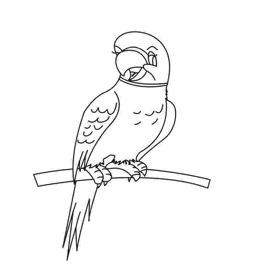 parrot printable parrot pattern use the printable outline for crafts printable parrot
