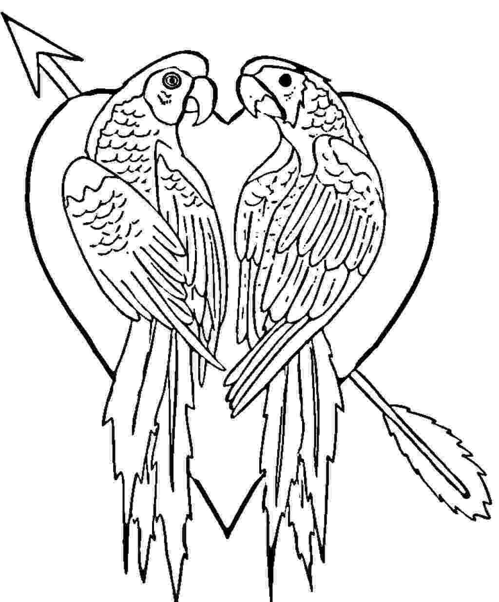 parrot printable parrots coloring pages to download and print for free printable parrot