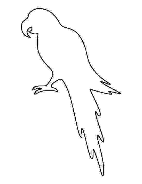 parrot printable printable parrot coloring pages for kids cool2bkids parrot printable 1 1
