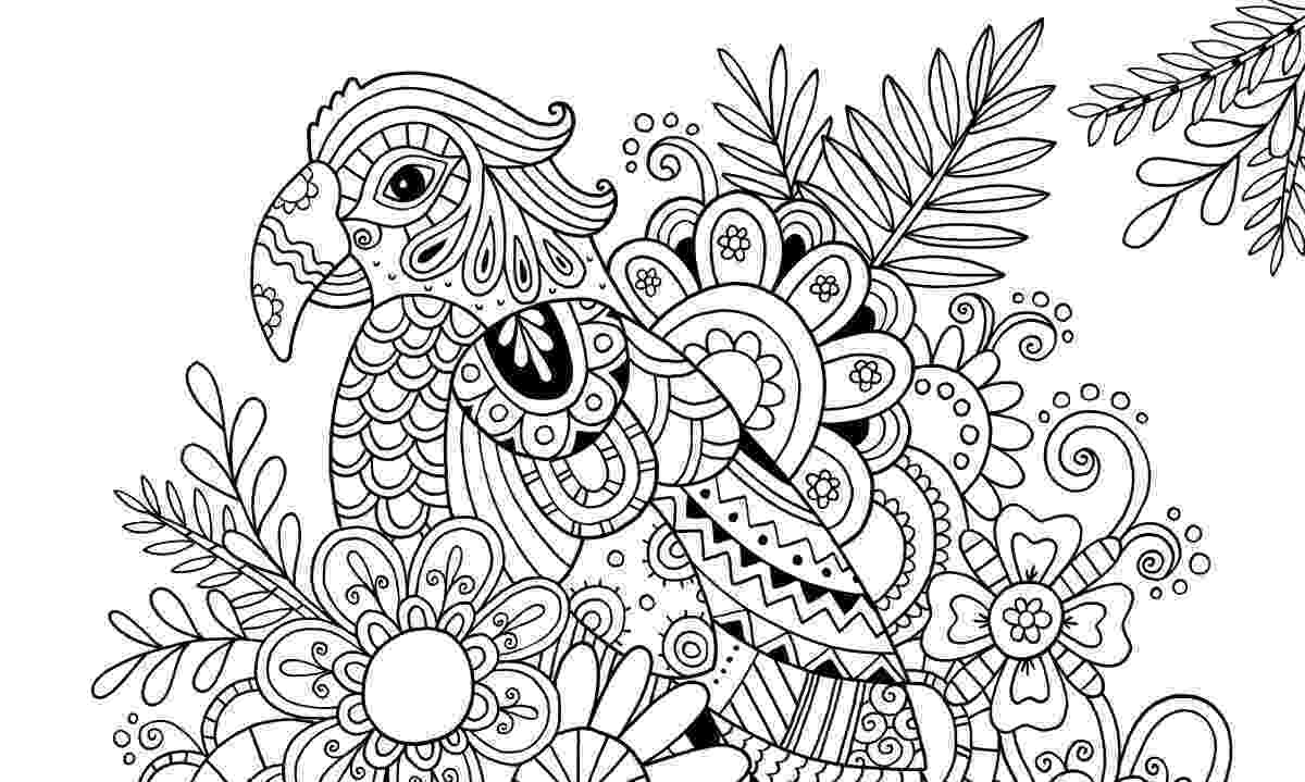 patterns to colour for adults free printable geometric coloring pages for kids patterns adults colour to for