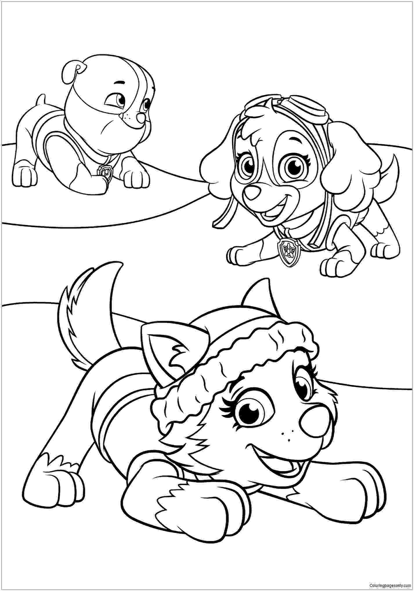paw patrol coloring pages free get this paw patrol preschool coloring pages to print patrol pages coloring free paw