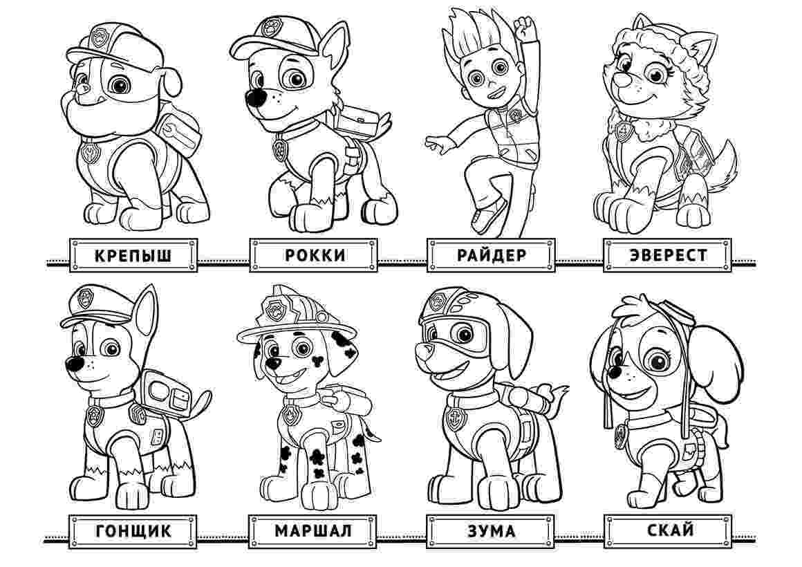 paw patrol coloring pages free paw patrol coloring pages free download on clipartmag paw pages patrol free coloring