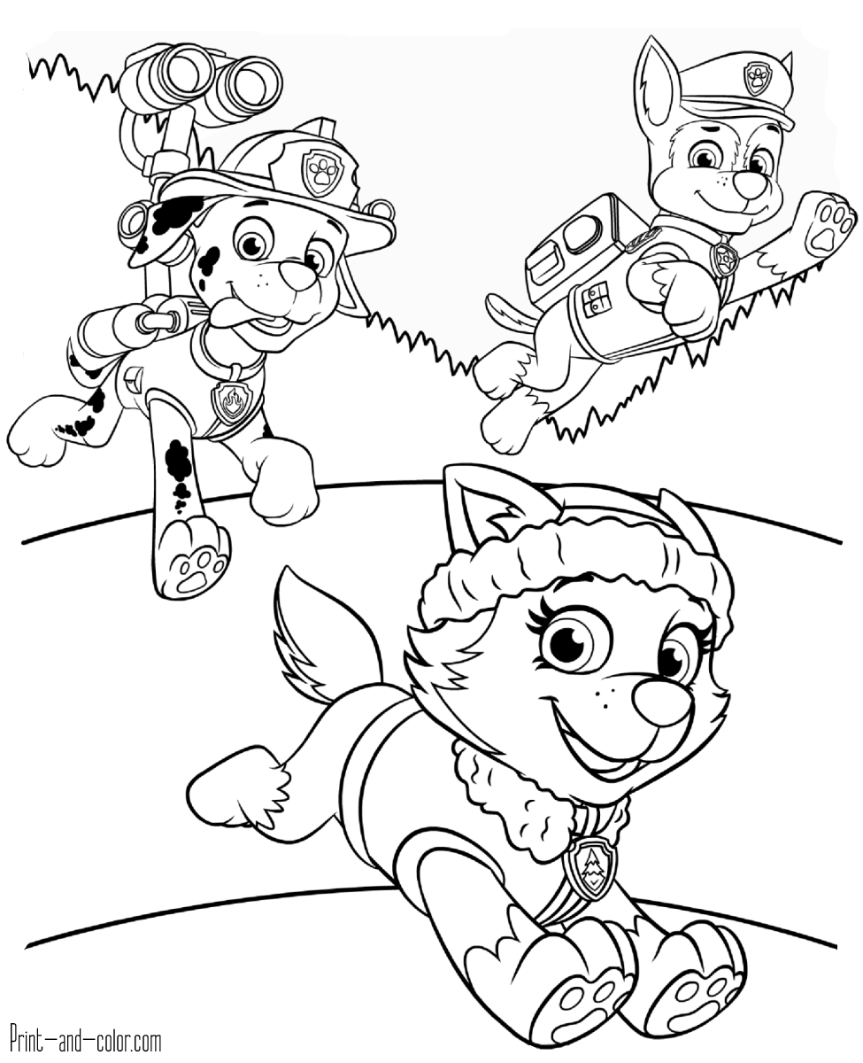 paw patrol coloring pages paw patrol coloring pages 27 print color craft paw pages coloring patrol