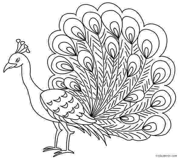 peacock coloring page printable peacock coloring pages for kids cool2bkids coloring page peacock