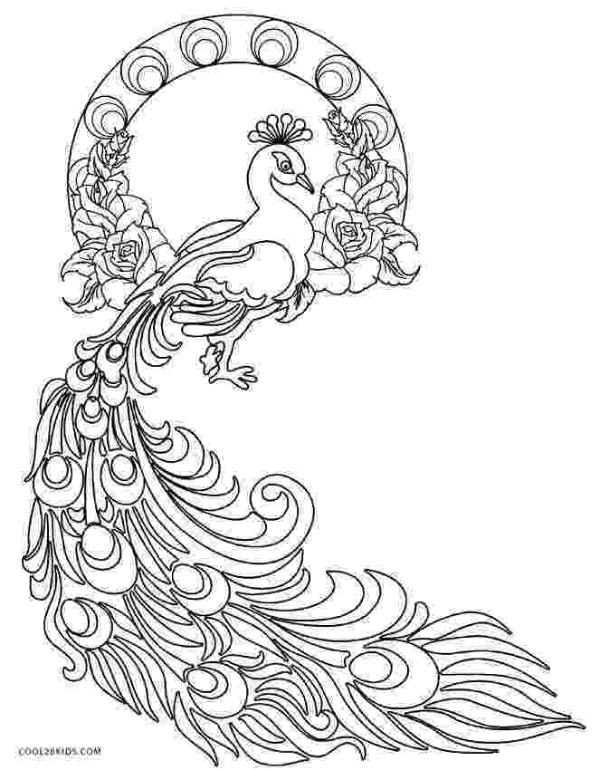 peacock coloring page printable peacock coloring pages for kids cool2bkids coloring page peacock 1 1