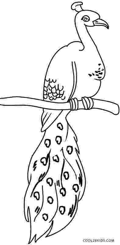 peacock coloring page printable peacock coloring pages for kids cool2bkids coloring peacock page
