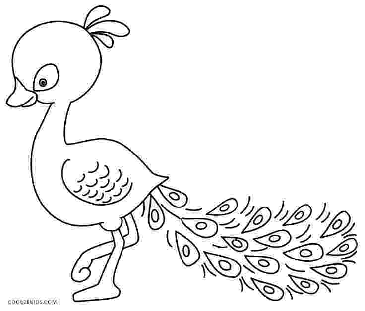 peacock coloring page printable peacock coloring pages for kids cool2bkids page coloring peacock 1 1