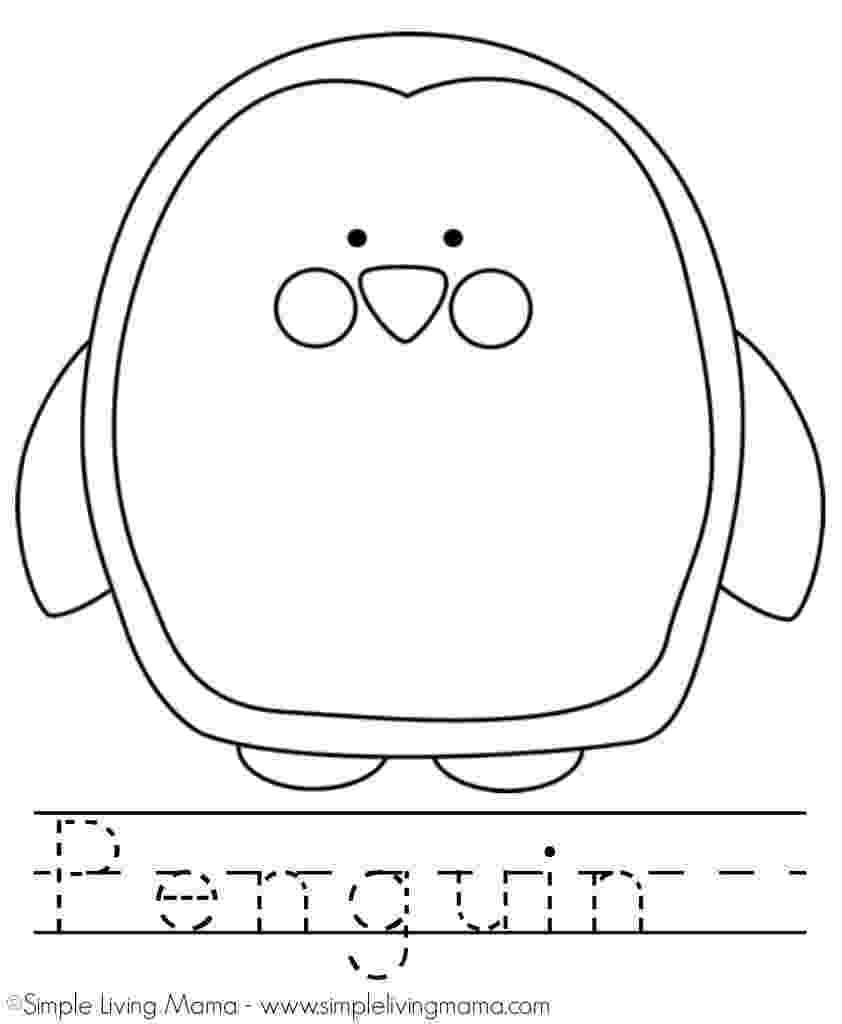penguin color sheet p is for penguin plus a printable penguin coloring sheet sheet penguin color