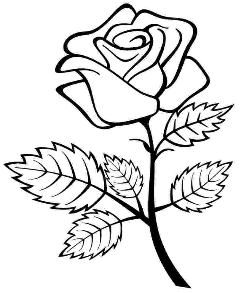 pics of roses to color rose coloring pages download and print rose coloring pages color roses pics of to