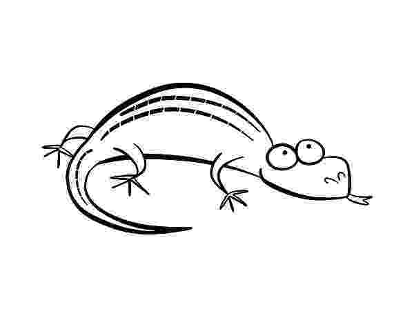 picture of a lizard to color ameiva lizard coloring pages download print online lizard to color of picture a