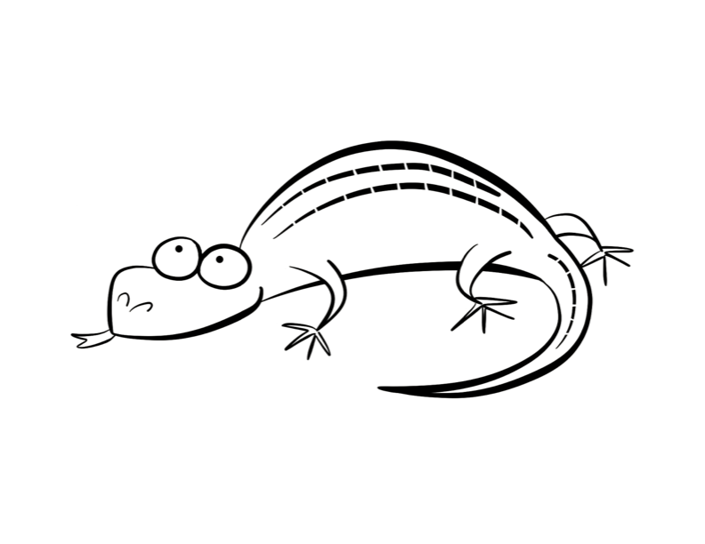 picture of a lizard to color free lizard coloring pages color to lizard picture a of