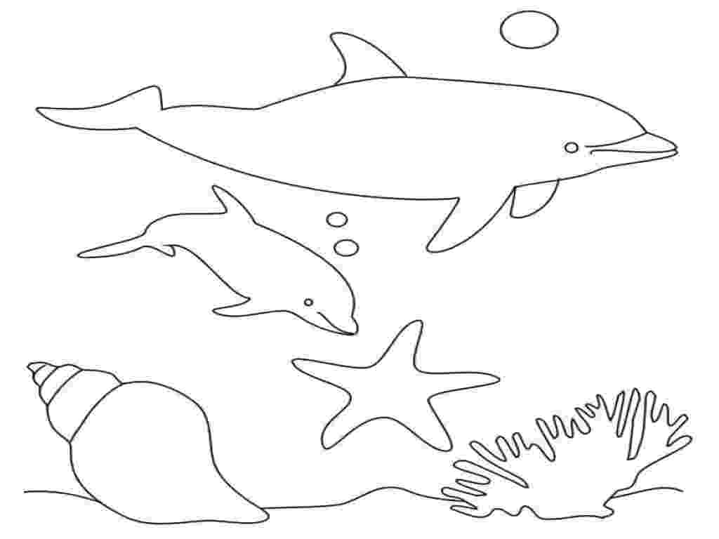 picture of dolphins to color free dolphin coloring pages of color to dolphins picture