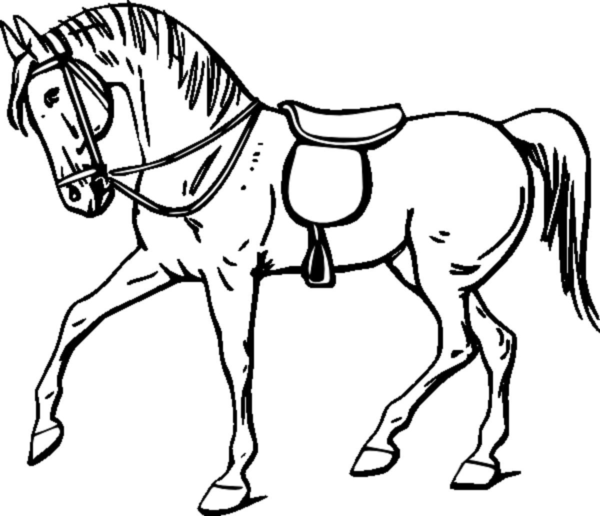 picture of horse to color coloring town to picture color horse of