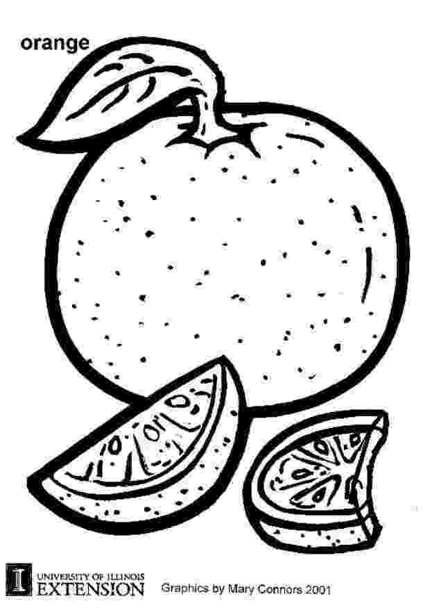 picture of oranges free oranges coloring pages learn to coloring picture oranges of