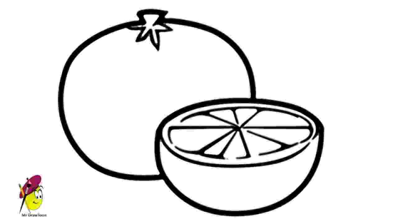 picture of oranges oranges on a branch fruit coloring page for kids fruits of oranges picture