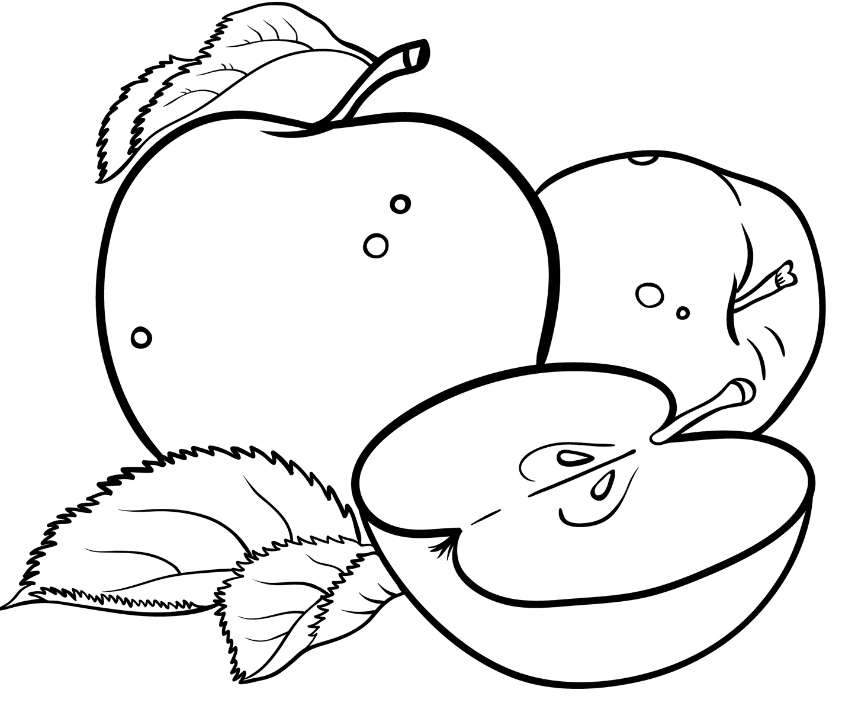 pictures of apples for kids free printable apple coloring pages for kids kids apples pictures for of