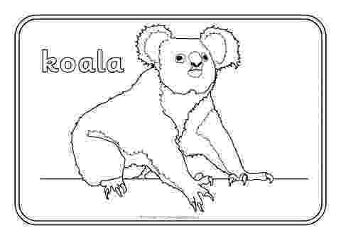 pictures of australian animals printable australia coloring pages to download and print for free pictures of animals australian printable