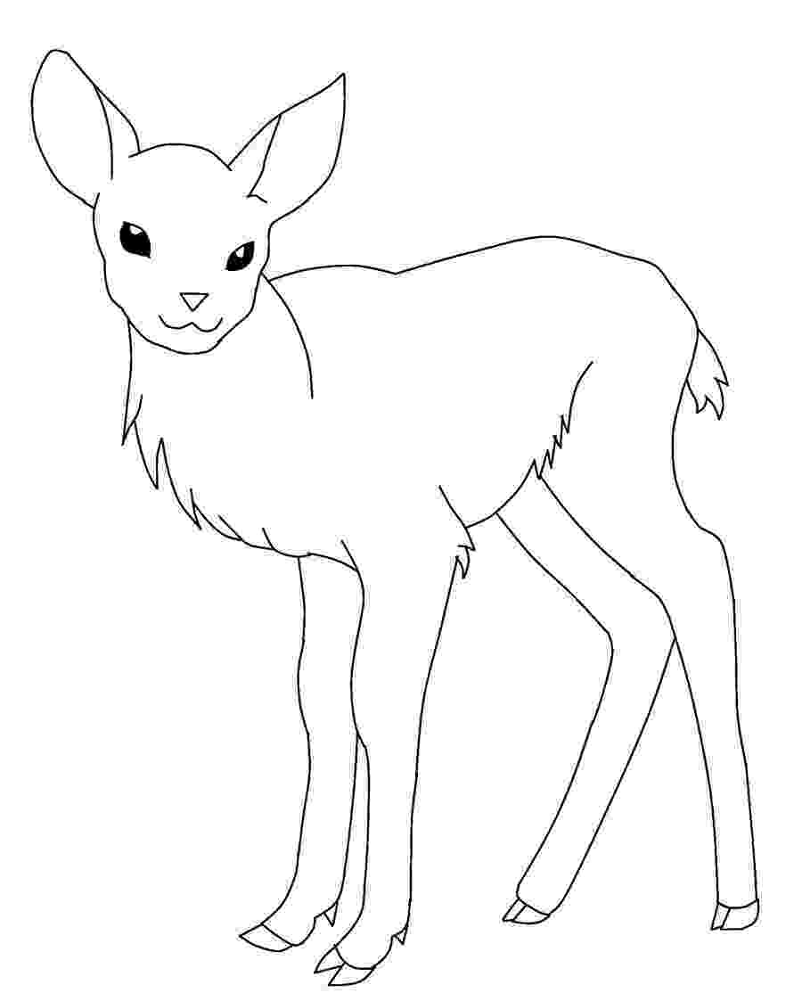 pictures of deers to color free printable deer coloring pages for kids deers to pictures color of