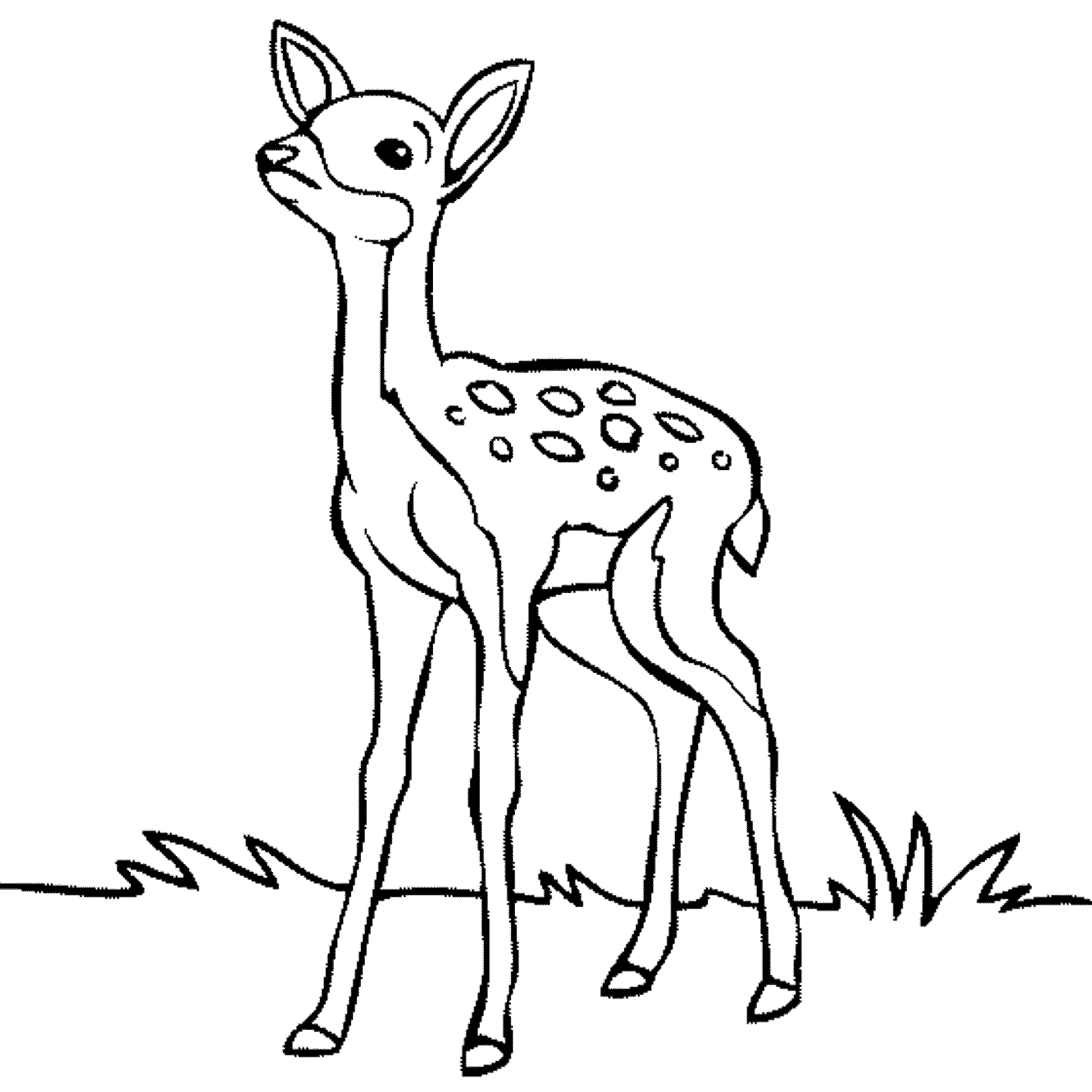 pictures of deers to color free printable deer coloring pages for kids to deers of pictures color