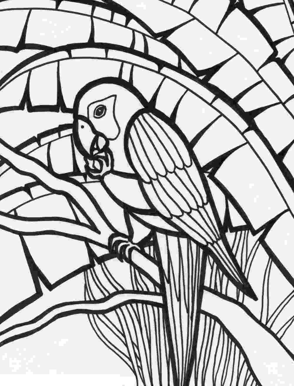 pictures of parrots to colour free printable parrot coloring pages for kids animal place of parrots pictures to colour