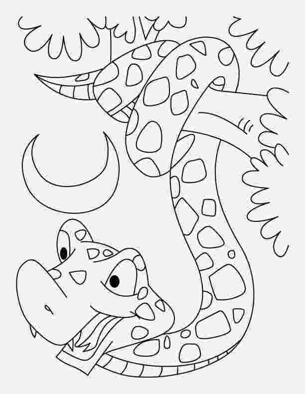 pictures of snakes to color free printable snake coloring pages for kids of to snakes pictures color