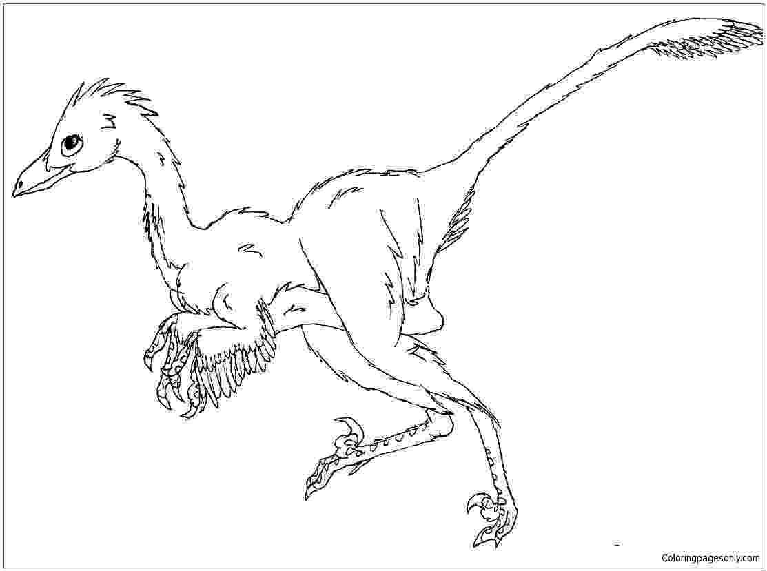 pictures of troodon dinosaur 17 best images about troodon on pinterest david l39wren of pictures troodon dinosaur