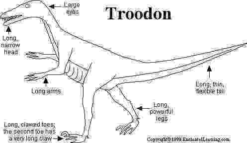 pictures of troodon dinosaur dinosaur coloring pages troodon of pictures dinosaur