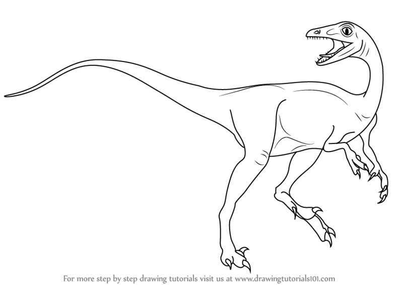 pictures of troodon dinosaur troodon facts habitat images adaptation and behavior dinosaur of troodon pictures