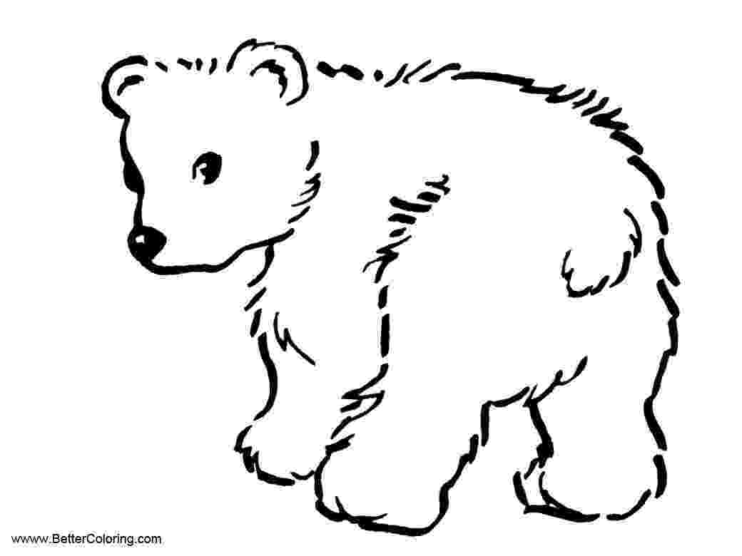 pictures of tundra animals arctic tundra animals coloring pages baby polar bear animals pictures of tundra