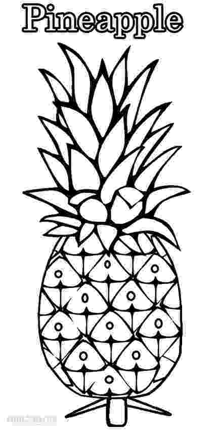 pineapple colouring picture pineapple coloring pages 360coloringpages picture colouring pineapple
