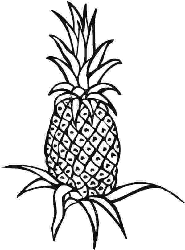 pineapple colouring picture pineapple coloring pages colouring picture pineapple 1 1