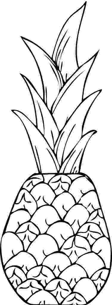 pineapple picture to color pineapple picture to color to color picture pineapple