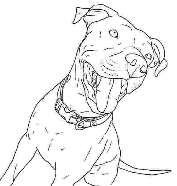 pitbull coloring pages taking pitbull out for walk coloring page coloring sky pages coloring pitbull