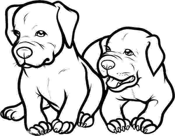 pitbull coloring pages two adorable baby pitbull dog coloring page coloring sky pages pitbull coloring