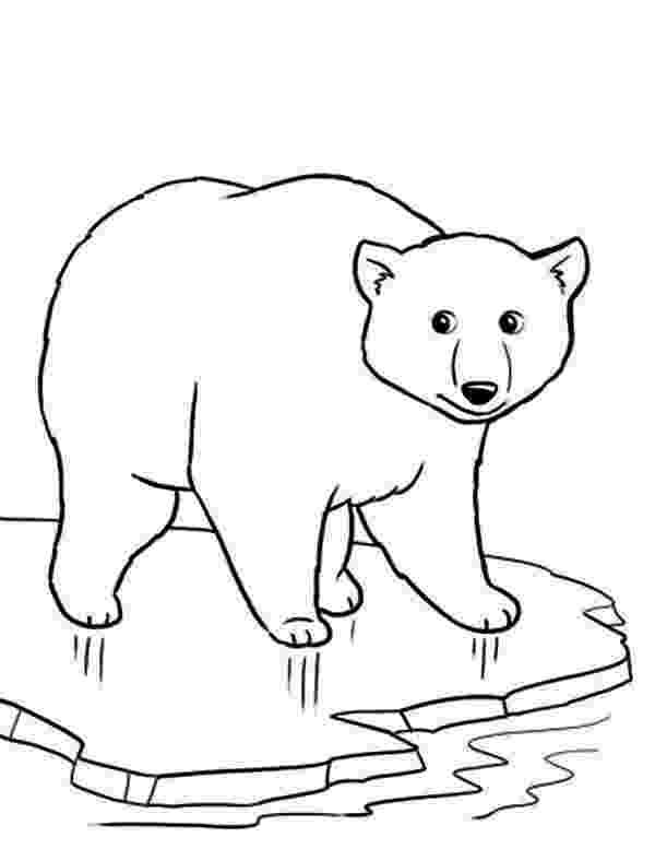 polar bear to color cartoon polar bear coloring pages at getcoloringscom bear polar color to